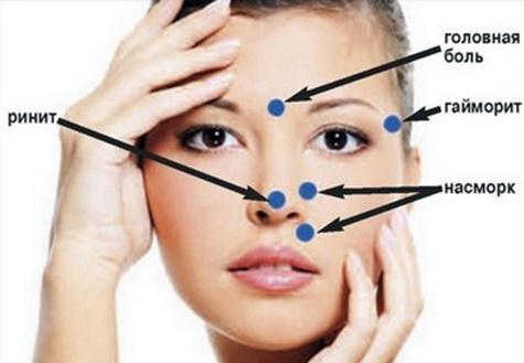 точки носа для массажа