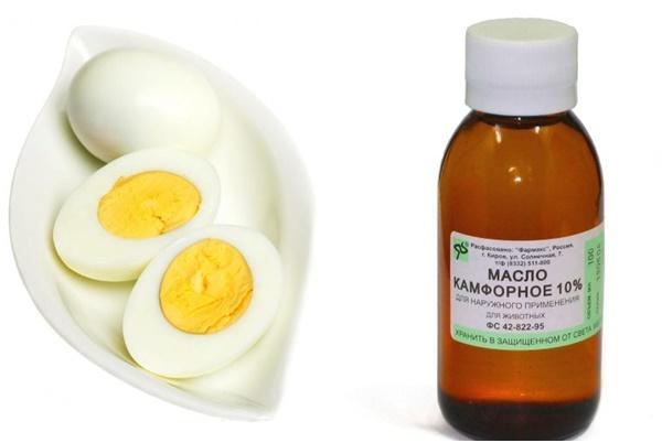 вареное яйцо и камфорное масло