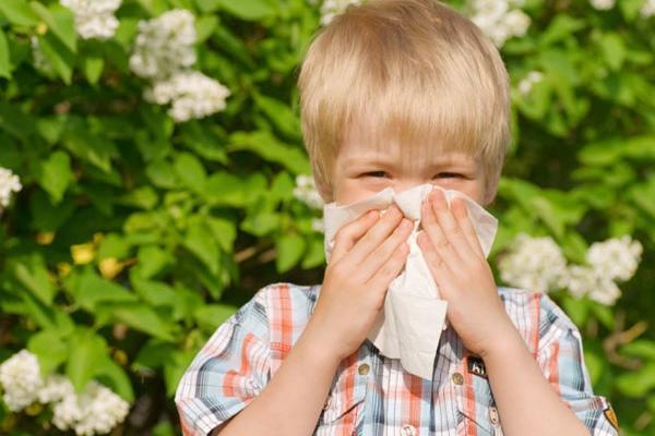 у ребенка аллергический насморк