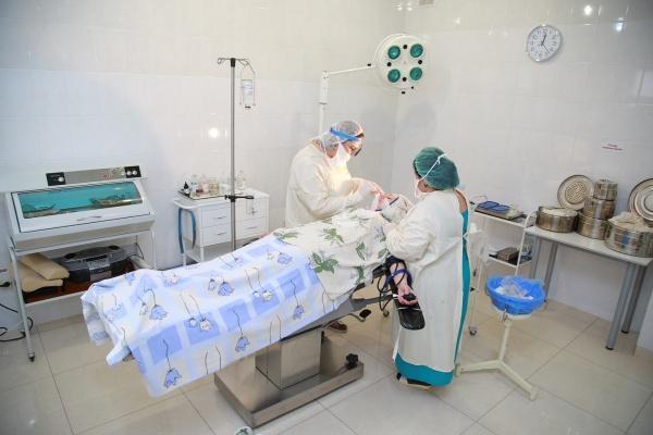 хирургическая операция по носу