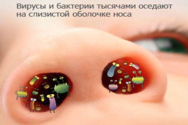 вирусы и бактерии в носу