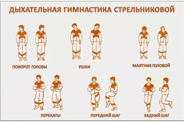 виды упражнение при гимнастике стрельниковой
