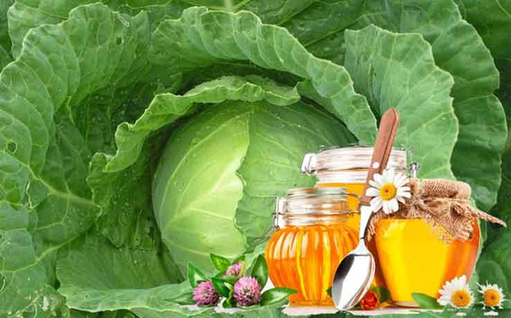 компресс из меда и капустных листов