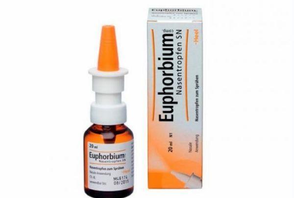 Препарат Эуфорбиум