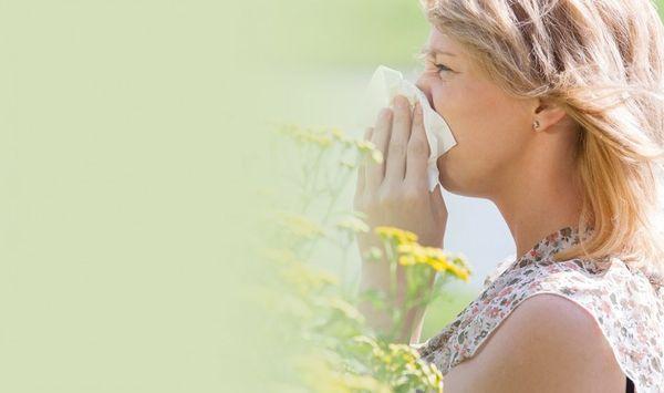 аллергический ринофарингит