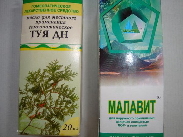 малавит и туя дн