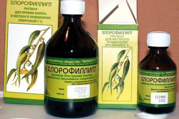 упаковка хлорофиллипта