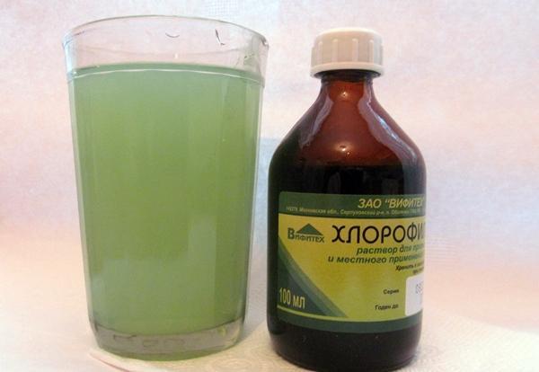 раствор хлорофиллипт в стакане